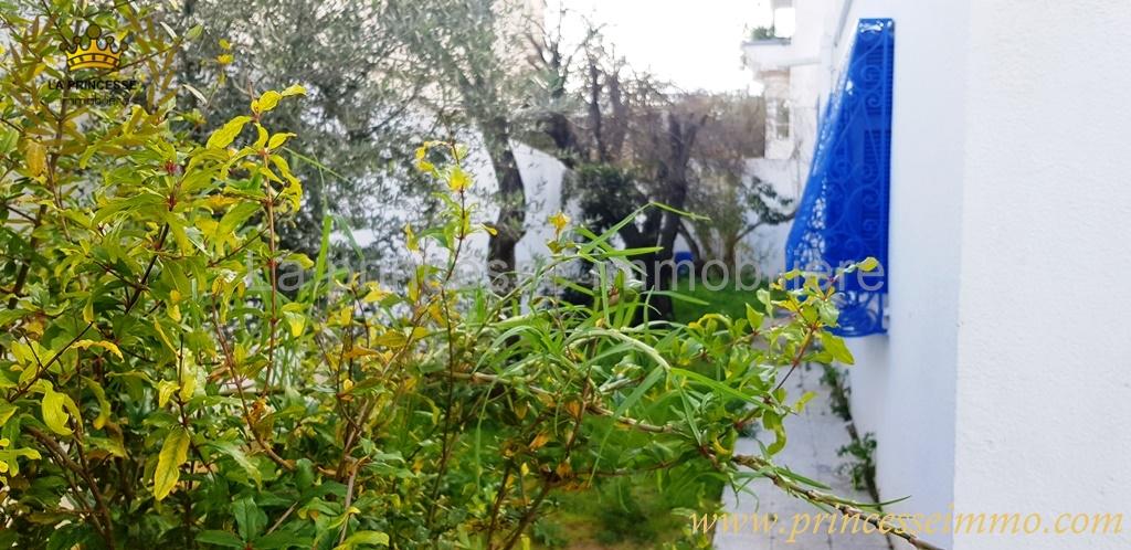 vente villa avec jardin à la marsa